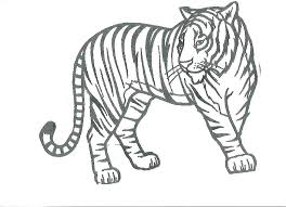 Tiger Coloring Sheet Trend Tiger Coloring Pages About Remodel Free