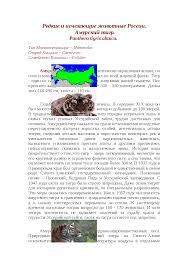 Амурский тигр реферат по биологии скачать бесплатно обитание реки  Это только предварительный просмотр