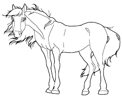 2 Foal Lineart Drawing For Free Download On Ayoqq Cliparts