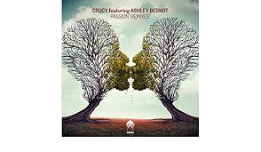 Passion - Remixes by Crocy featuring Ashley Berndt on Amazon Music -  Amazon.com