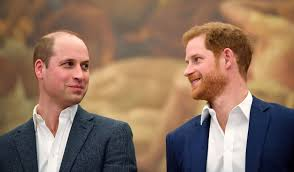 Prince harry says trauma of diana's death led him to use alcohol and drugs. Prince Harry And Prince William Are Speaking Regularly Again