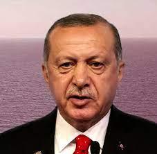 Neue Strategie der Türkei: Erdogans doppeldeutiges Muskelspiel - WELT