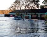 Images & Illustrations of flood