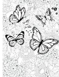 Color Pages Of Butterflies Color Pages Of Butterflies Coloring Pages