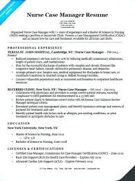 Sample Project Manager Resume Objective Healthcare Project Manager Resume Resume Sample Doc Project 81