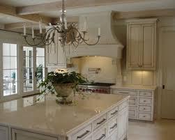 Small Picture Home Decor Cabinets New Orleans Antique White Fleur De Lis Double