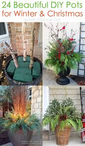 24 colorful outdoor planters for winter