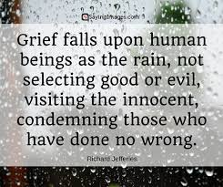 Quotes About Grief Extraordinary 48 Grief Quotes With Pictures SayingImages