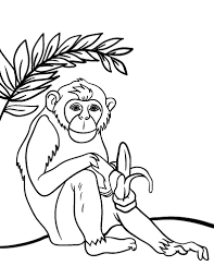Small Picture Free Chimpanzee Coloring Page