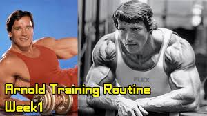 the1000000fitnessvideos bodybuilding gym