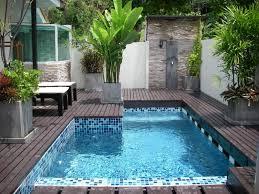 Mini Swimming Pool Designs Home Design Ideas