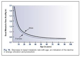 Basal Metabolic Rate Bmr Chart How To Determine Your Basal Metabolic Rate Bmr