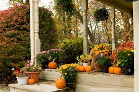 Outdoor Thanksgiving decorations - colorful mums, wooden turkey and  pumpkins on porch and porch steps