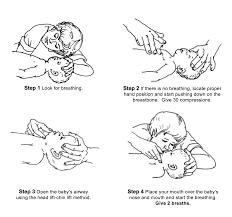 Cardiopulmonary Resuscitation Cpr For Infants