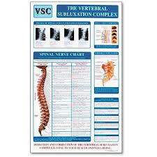 Vertebral Subluxation Chart Vertebral Subluxation Complex Poster Vsc Clinical Charts
