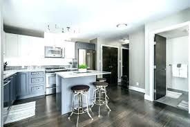Condo Kitchen Remodel Interior Cool Design