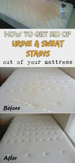 How To, How To Get Sweat Stains Out Of Cotton Sheets: How To Get