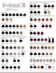 Alfaparf Milano Evolution Of The Color Chart Flabebe Evolution Chart All Colrs Gbpusdchart Com