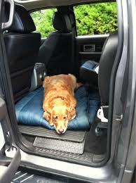 dog please help fitted or loose back seat cover image
