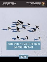 Yellowstone Wolf Project Report 2016 (U.s. National Park Service)