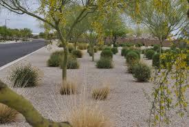 Small Picture Desert Landscape Ideas Concept 6314