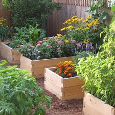 how to make garden beds. Plain Beds Natural Cedar Raised Garden Bed With Trim Pack In How To Make Beds N