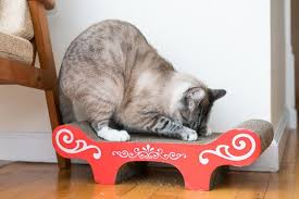 The Best Cat Scratchers For 2021 Reviews By Wirecutter