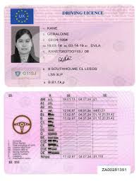 Passport License Passport License And On Fake By Certificate Ids Pin Driver Europe Professional