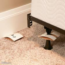 How to Get Rid of Bed Bugs: A DIY Guide \u2014 The Family Handyman