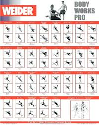 Weight Lifting Workout Chart Template – Airsentry.info
