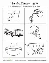 64 best Five Senses elective images on Pinterest   School  Science likewise Five senses worksheet for kids   Crafts and Worksheets for in addition The 5 Senses Worksheets   Free Printables   Education additionally Five Senses Matching   Worksheets  Kindergarten and Students together with Five Senses – Sense of Smell   Touch Activity   Learning 4 Kids also Sense of Hearing   Worksheets  School and Kindergarten additionally 5 senses worksheet for kids  12    Crafts and Worksheets for likewise wiildcreative   Printables Worksheet Center   Linkis additionally  furthermore Pin by Shruthi Srinivasan on Teaching   Pinterest   Worksheets besides . on sense smell worksheets for preschool