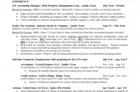 Accounts Manager Resume Template Technical Account Sample Image