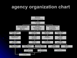 Creative Agency Org Chart Advertising Agency Org Chart Related Keywords Suggestions