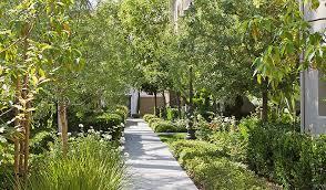 apartment landscape design. Brilliant Apartment Woodbury Lane Apartment Homes With Landscape Design