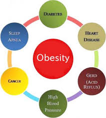 how to write ielts cause and effect essay ielts up effects of obesity