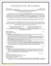 Resume Writer Nyc Resume Writers Nyc Venturecapitalupdate 2