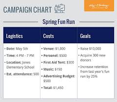 Fundraising Plan Campaign Chart Aly Sterling Philanthropy