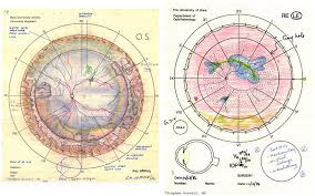 Fundus Chart The Daily Palette