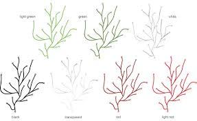 algue  hivemoderncom