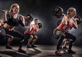 the world s biggest exercise parion program all the benefits of weight using adjule weights in a friendly environment set to great