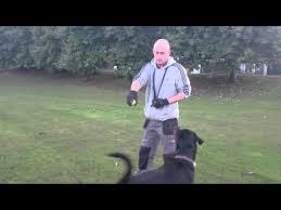 Rotterman Hector ball jumping - YouTube