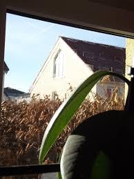 Sema Gesellschaft Für Innovationen Mbh Vogelschutz Fensterstift