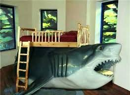 Great Shark Bedroom Decor Shark Decor For Bedroom Perfect Ideas Images About Room  Stuff On Decorating Shark