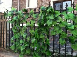 3920 Best Garden Vines Images On Pinterest  Garden Ideas Climbing Plants For Fence