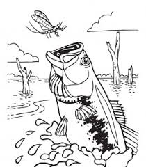 Small Picture Bass Fishing Coloring Pages