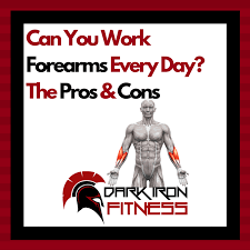 can you work forearms every day the