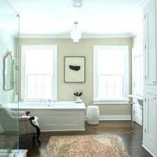 tan bathroom gray and tan bathroom inspirational tan bathroom rugs for gray and tan bathroom fresh tan bathroom
