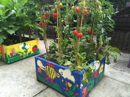 2018 2019 school garden grant now open