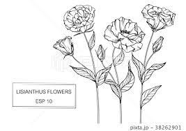 背景 花 絵 イラストのイラスト素材 Pixta