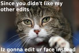 Funny Cat Quotes Krazzy Pitures Photos